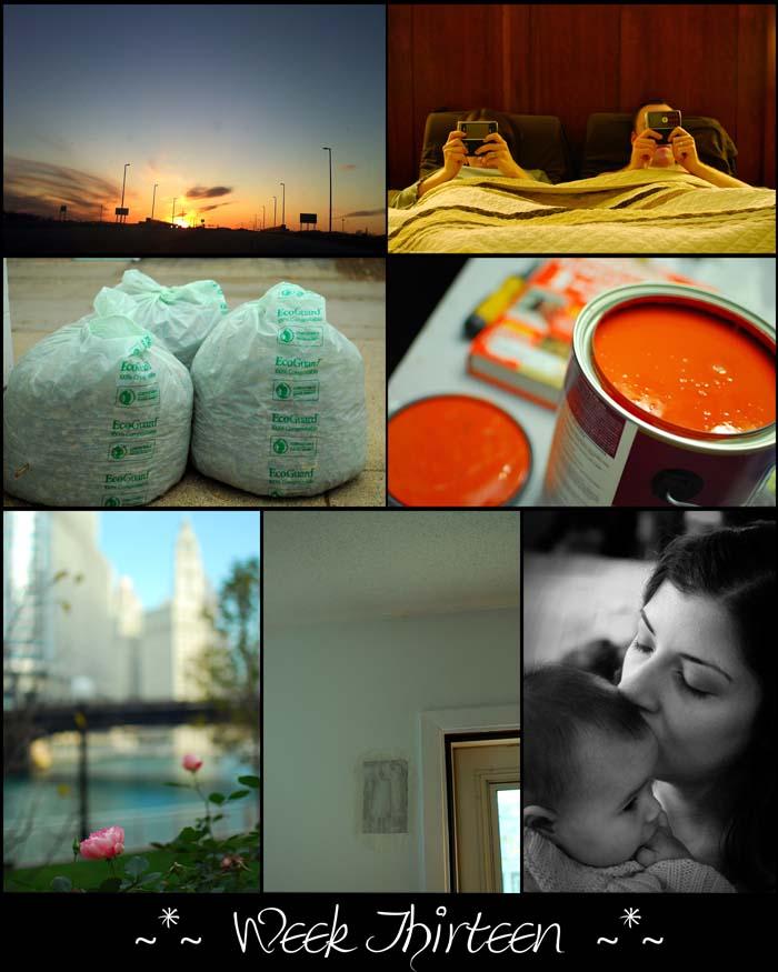 Week 13 blogsize