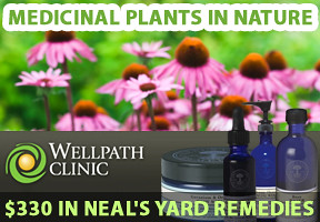 natural medicine clinic Ontario wild plants photo contest