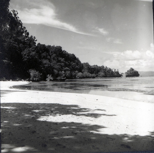 Beach in northern Halmahera