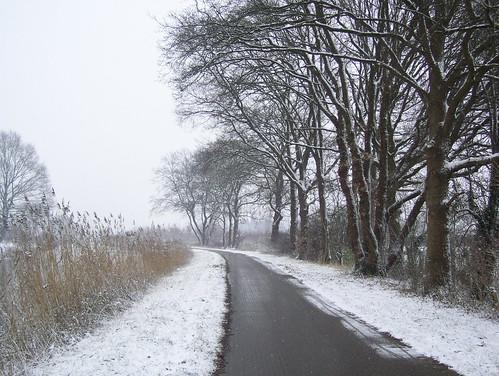 lapa lapa kar yagmis ;)