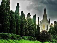 Nei sogni.......... (fata_ci) Tags: panorama verde alberi natura paesaggio