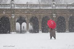 Bethesda Blizzard (CVerwaal) Tags: bethesdaterrace centralpark snow umbrellas winter newyork ny usa olympusem5 lumixgvario1235f28