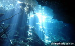 Cenote Chac Mool (divingthecloud) Tags: cenote diving buceo underwater rivieramaya caverndiving cavern caverna chacmool fotosub bajoelagua bahiadivers viajesbuceo viajesbuceocom mexico