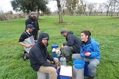 Teamwork (FISH-BIO) Tags: marking salmon hatchery fish teamwork field work outdoors fisheries technicans