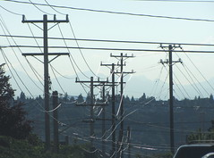 Utility poles in a row on S. Stevens St. Photo by Wendi.