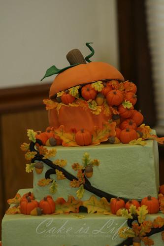 Close-up of Pumpkin [EXPLORED]