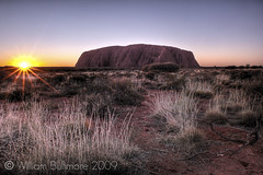 The Dreaming (WilliamBullimore) Tags: sun sunlight rock sunrise dawn sand nt australia dirt flare uluru arid daybreak northernterritory spinifex ulurukatatjutanationalpark