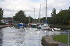 Spike island (DianneB 2007.) Tags: marina boats cheshire widnes spikeisland dib gadgetgirl fiddlersferrypowerstation