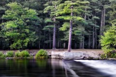 Sacandaga River (Ronaldo F Cabuhat) Tags: longexposure camping trees camp reflection green water forest river landscape stream canonefs1755mmf28isusm sacandagariver canoneos50d cabuhat