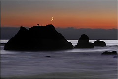 Waxing Crescent (Extra Medium) Tags: ocean longexposure moon bird beach rocks waxingcrescent elmatadorstatebeach 2010calendar