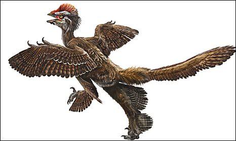 dinosaurs_1488891c