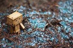 (sⓘndy°) Tags: sanfrancisco toy toys box figure figurine sindy kaiyodo yotsuba danbo revoltech danboard 紙箱人 阿楞 flickrunitedaward amazoncomjp