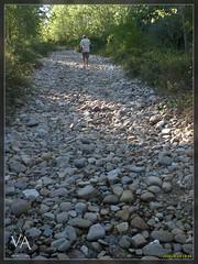 Lecho de rio seco en San Millan de Juarros / Dry river bed in San Millan (Spain) (Trensamiro) Tags: españa rio river dc spain stones benq dry va drought stony burgos seco sequia c62 juarros sanmillan lecho pedregoso trensamiro