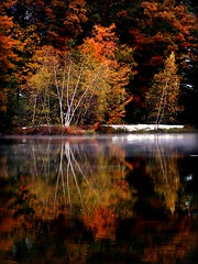 Smoke on the Water (socalgal_64) Tags: autumn trees mist lake snow mountains fall water leaves reflections landscape pond woods pennsylvania smoke scenic steam pa poconos snowfall picturesque breathtaking waterscape abigfave impressedbeauty theunforgettablepictures breathtakinggoldaward breathtakinghalloffame