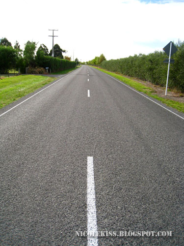 straight road in marlborough