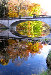 Reflection (*Keith*) Tags: bridge autumn newyork reflection fall water leaves creek pond stream foliage upstatenewyork hydepark span hudsonrivervalley dutchesscounty whitebridge hydeparkny crumelbowcreek vanderbiltmansionnationalhistoricsite