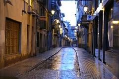 Jaca-Huesca-Aragón (calafellvalo) Tags: españa noche flickr huesca aragon nocturnas ciudadela jaca pirineos pirinees ovejas aragón ciervos calafellvalo jacahuescaaragónpirineosciervosovejascalafelvalo reynodearagón