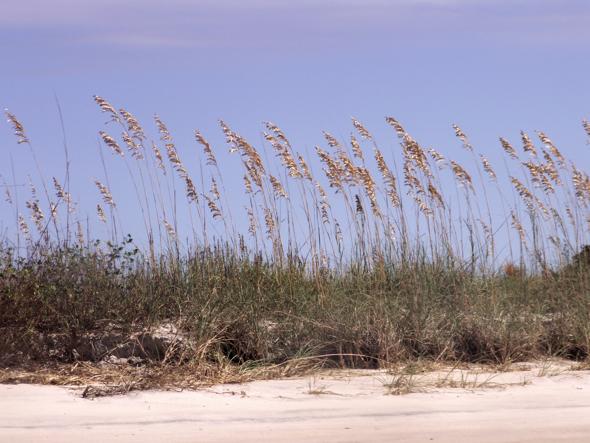 111009_beach09
