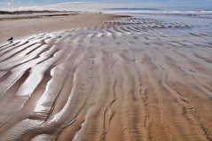 Pismo Beach 2 (pixelmama) Tags: ocean california sea seascape beach clouds landscape sand shoreline pacificocean ripples pismobeach gettyimages pismostatebeach northbeachcampground pixelmama