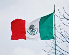 Flag of Mexico (Flagman00) Tags: bandeira mxico mexico flag bandera mexique fahne mexiko drapeau bandiera     ilmessico