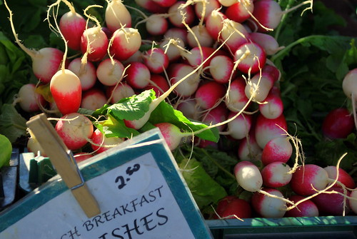 Locally Grown Radishes