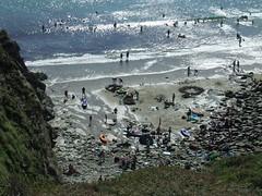 beach near st.davids (petrosvaios) Tags: sea beach stdavids