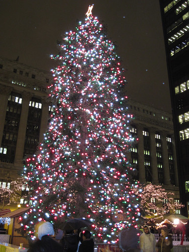 Christmas Tree at Daley Plaza