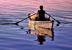 Remador (Marcelo-Vieira) Tags: people man reflection nature boat fishing pessoas barco gente paddle rowing oar worker pesca atwork reflexo trabalho pescador remo pescaria trabalhando barquinho remador duetos flickrchallengegroup flickrchallengewinner challengegamewinner