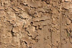 Dry Mud Texture - by GrungeTextures