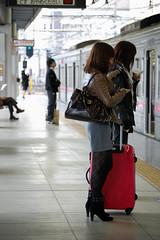 Waiting (jpellgen) Tags: november woman girl station japan train japanese tokyo nikon asia platform cellphone line keitai nippon 1855mm nikkor suitcase hino 2009 nihon kanto keio honshu takahatafudo d40  keiosen