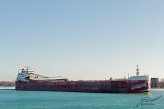 Canadian Steamship Lines: Laurentien