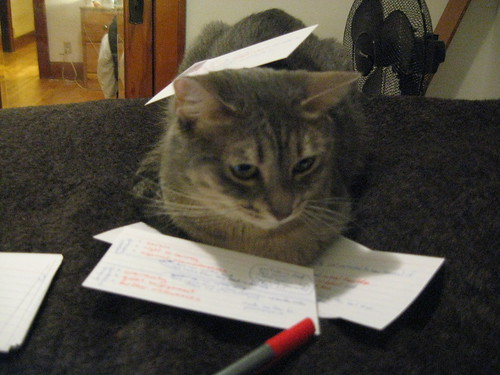 Maisie helps me study