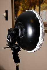 Hand held DIY Beauty dish