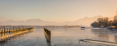 late afternoon (hjuengst) Tags: chiemsee afternoon sunset mountains alps trees hut pile water lake panorama prien