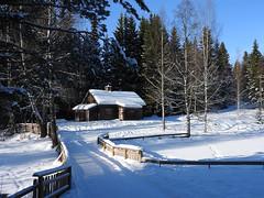 Day 045/365 2017-02-14 Eiktunet (Kirsten Osa) Tags: gjøvik oppland norway eiktunet