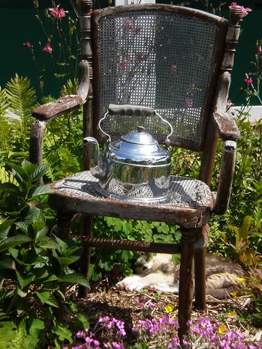 Teapot & Cat