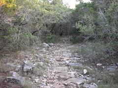 Sendero Balcones trail in the backcountry.