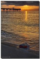 Before the Sun Disappeared... (Fraggle Red) Tags: ocean beach water clouds sunrise dawn sand surf florida shell hollywood northbeach jpeg atlanticocean hdr conch conchshell daniabeach blueribbonwinner canonef24105mmf4lisusm 3exp mywinners abigfave daniabeachpier anawesomeshot hdrqueen browardco betterthangood dphdr sailsevenseas trolledproud