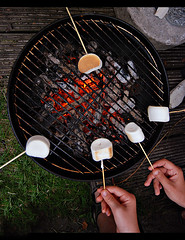 roasting marshmallows (4)