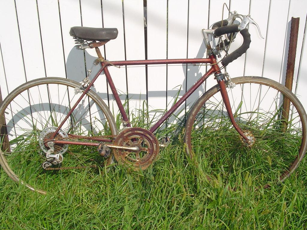 The Freecycle free cycle Karma cycle