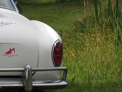 IMG_2063 (selberdreher) Tags: vw bug acc connection oberpfalz kfer aircooled vdub kfertreffen