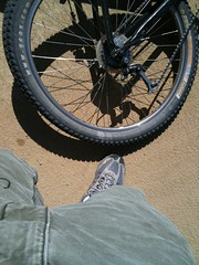Crotch and Wheel Photo