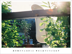 今井美樹 ╳ Goodbye Yesterday.
