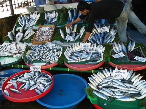 Karaköy balık pazarından birkaç balık çeşidi