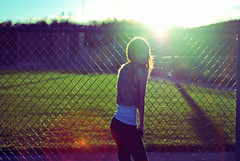 FP (im_on_tambourine) Tags: sun colour face field fence fur shadows curves flare sunflare