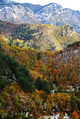 Autumn - winter canvas (Mavroudakis Fotis) Tags: autumn sky mountain nature horizontal outdoors day foliage lush idyllic scenics beautyinnature nopeoplephotography