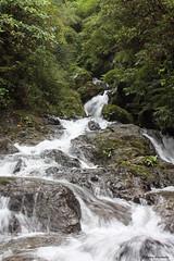 agua (Edgar Miranda) Tags: forest river fortuna cascada chiriqui hornito edgarmiranda gualaca valledelamina quebradalamina