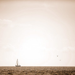 Random thoughts (.I Travel East.) Tags: life light sea summer lake bird sepia louisiana scene sail duotone mandeville moment lucio yatch randomthoughts fontainbleau lakeponchartrain d700 mandevillelouisiana hugstoyoumylovelyfriend