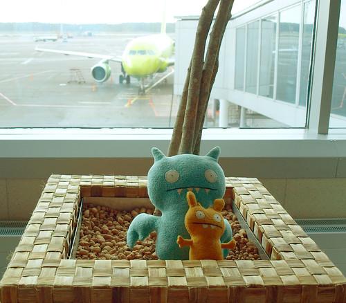 mi aeroplane