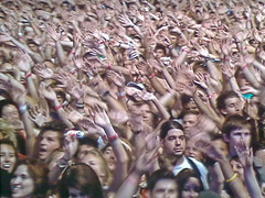 Killers Crowd
